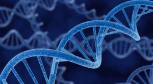 Centro Médico Holistico - Estudios Genéticos